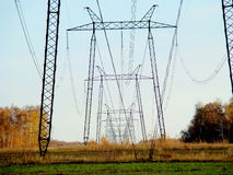 Power line. The power line passes through the woods of Altai Royalty Free Stock Images