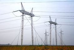 Power line. High voltage power line field Stock Photography