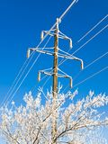 Power line. Electricity power line with frost crystals in forest Royalty Free Stock Photography