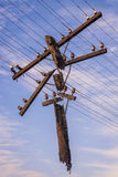Power line against the sky Royalty Free Stock Photo