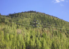 Power line in Divnogorsk. Krasnoyarsk krai. Russia Royalty Free Stock Photo