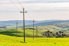 Power line in a field Stock Image