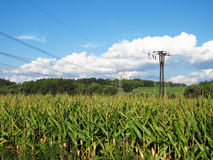 Power line in the fields Stock Photos