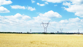 Power line that goes to the city through wheat field Royalty Free Stock Photos