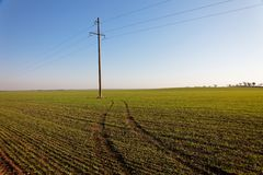 Power Line in Green field Royalty Free Stock Photography
