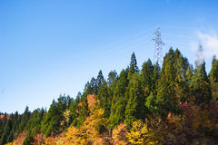 Power line and grid on the mountain Royalty Free Stock Photography