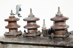 Power line insulators Royalty Free Stock Image