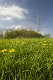 Power line over meadow, UK. Electricity pylon and cables over lush green field with yellow dandelions royalty free stock photos