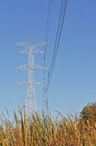 Power line pole Stock Photo