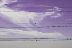 Power line pole. On cloudy sky Royalty Free Stock Image