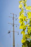 Power line repair Stock Photography