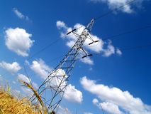 Power line and rice field 2 Royalty Free Stock Image