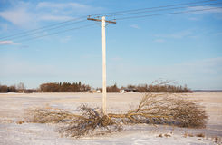 Power line safety Royalty Free Stock Photo