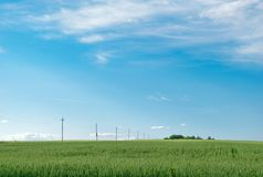 Power line stretching across the endless green field towards the horizon under a blue sky Stock Photo