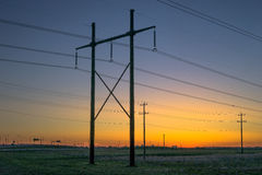 Power line in sunrise light Stock Image