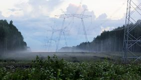 Power line in forest. In the field stock images