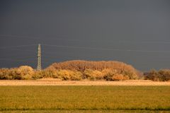 Power line in the sunshine before the storm. Stock Image