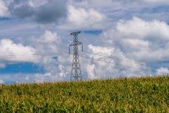 Power line tower, corn field, minnesota Royalty Free Stock Photos