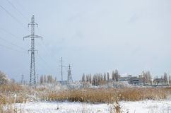 The power line tower is located in a marshy area, covered with snow. Large field of yellow bulrushes.  royalty free stock photos