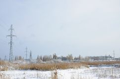 The power line tower is located in a marshy area, covered with snow. Large field of yellow bulrushes.  stock image
