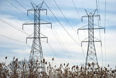 Power Line Towers and Bulrush. Two power line towers framed by marsh grasses Stock Image
