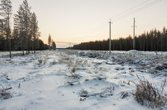 Power line in winter at dawn Royalty Free Stock Photo