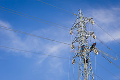 Power line workers Royalty Free Stock Images