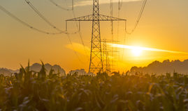 Power line in a yellow sky at sunrise. In summer Royalty Free Stock Photos