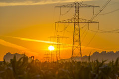 Power line in a yellow sky at sunrise Royalty Free Stock Image