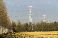 Power line, Zerbolo (North Italy) Royalty Free Stock Images