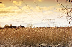 Power lines. And power poles with roofs of reed stalks in the background Royalty Free Stock Photography