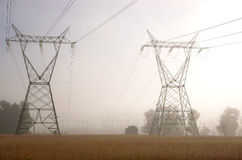 Power Lines. In the Morning Mist stock image