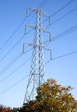 Power lines above the trees. Image of typical power lines, electricity lines carried on a pylon above some trees stock photography
