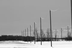 Power lines along a road. Power lines beside a road in winter in black and white Stock Photos
