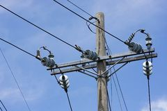 Power lines on a concrete pole Royalty Free Stock Images