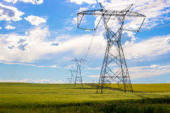 Power lines in a farm field Stock Images