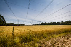 Power Lines & Field Royalty Free Stock Image