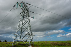 Power lines in a field Stock Photography