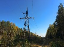 Power lines in the forest under the blue sky royalty free stock photography