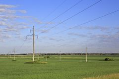 Power lines on green field with seedlings of Royalty Free Stock Images