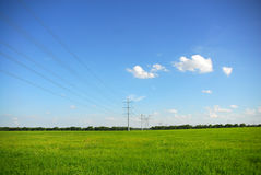 Power Lines in green grass Stock Images
