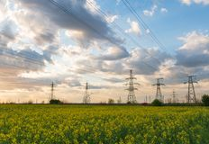 Power lines and high-voltage lines against the backdrop of blooming oilseed rape on a summer day. Green energy. Transmission of electricity by means of royalty free stock image