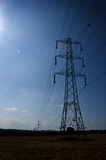 Power lines. National grid power lines and pylons with sunlight and flare from left Royalty Free Stock Images
