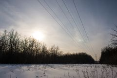 Power lines, sunset and forest royalty free stock photo