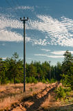 Power lines support at forest outskirts Stock Images
