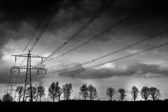 Power lines. And trees near Heythuysen, Netherlands Royalty Free Stock Photos
