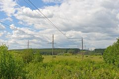 Power lines through vast fields and forests. On a sunny summer day royalty free stock image
