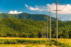 Power lines and view of the Blue Ridge Mountains in the Shenando Royalty Free Stock Images