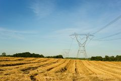 Power lines through wheat field Stock Photos