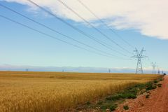 Power Lines. In a wheat field Royalty Free Stock Photography